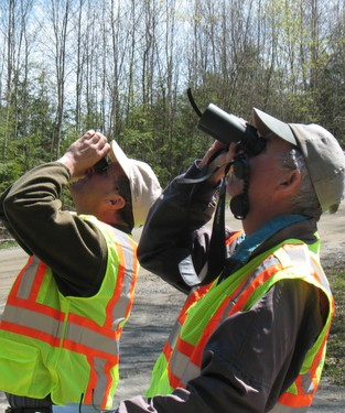 Forest Pest First Detectors conducting a survey.
