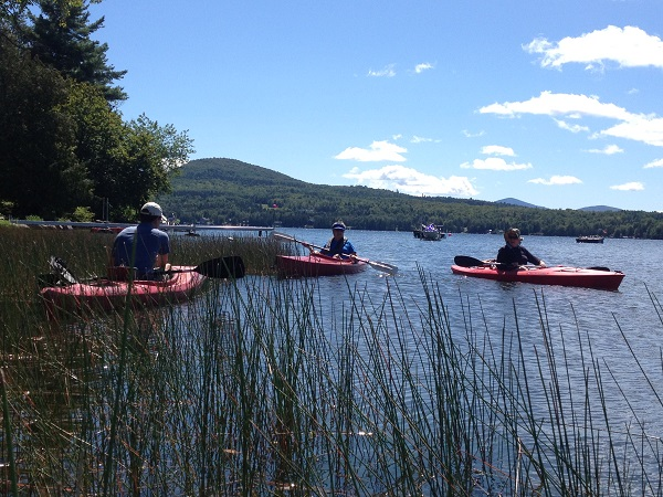 Volunteers search for invasive aquatic plants